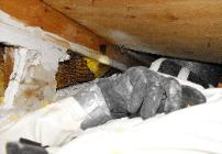 Honeycomb in attic removal