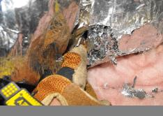 Rats chewed through A/C ductwork