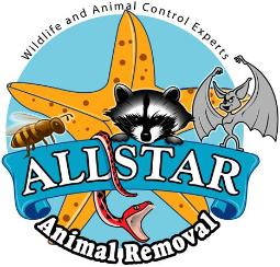 Allstar Animal Removal